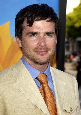 Matthew Settle at the LA premiere of Divine Secrets of the Ya Ya Sisterhood