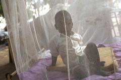 Malaria vaccine one step closer after GSK trials
