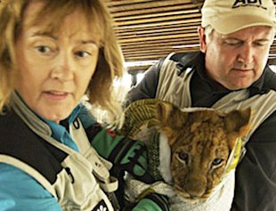 ADI President Jan Creamer and 'Lion Ark' director Tim Phillips rescue a lion cub in Bolivia.