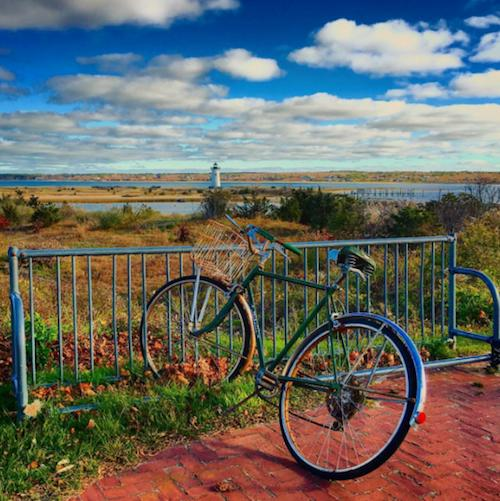 25 Gorgeous Glimpses of Autumn on Martha's Vineyard