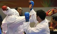 Brains Not Brawn Give Karate Experts Punch