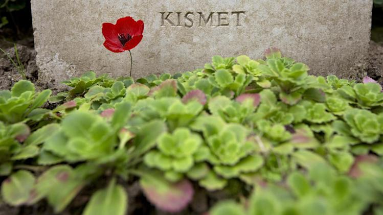"In this photo taken on Saturday, July 26, 2014, a paper poppy stands in front of a World War I grave with the epitaph ""Kismet"", which translates to ""Fate"", at the Saint Symphorien Cemetery near Mons, Belgium. The serenity of the cemetery amidst the peaceful pastures seems almost removed from those of early August in 1914 when the great powers of the age declared war on one another, knowing little what they condemned the world to for the next four years. (AP Photo/Virginia Mayo)"
