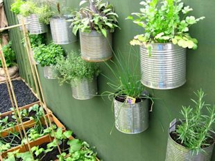 Coffee Can Wall Garden