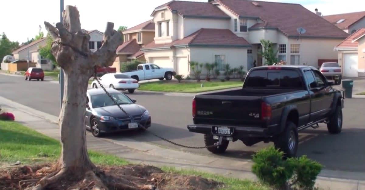Truck vs Tree Stump: Tree Fights Back