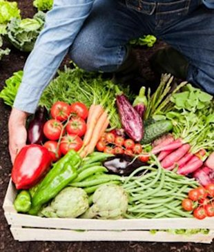 Organic food may boost your immunity