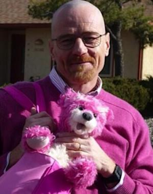 'Breaking Bad': Aaron Paul Reveals Walter White in Pink, With Doomed Teddy Bear (Photos)
