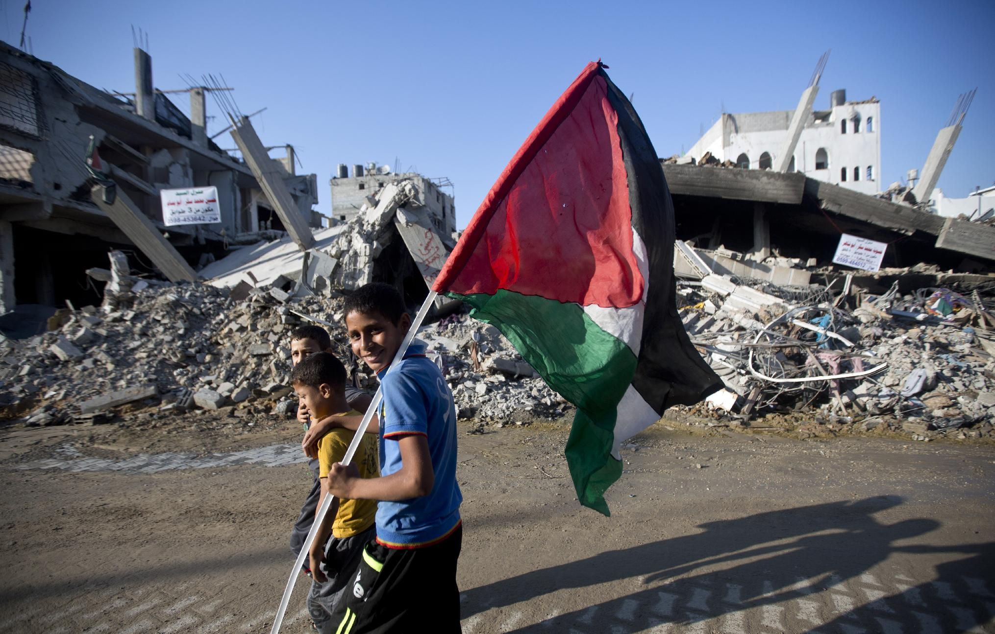 UN will 'take time' to decide on Palestinian resolution