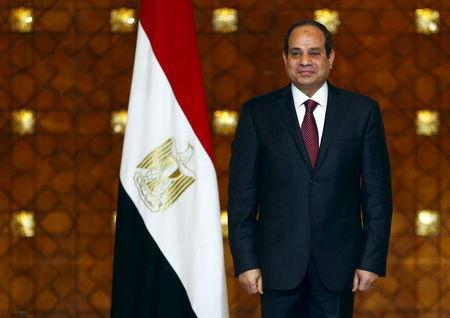 Sisi loyalists sweep list seats in Egypt's election