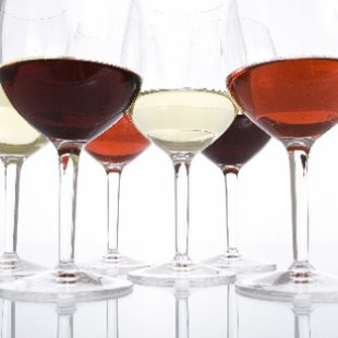 Wine 101: The Basics for Beginners