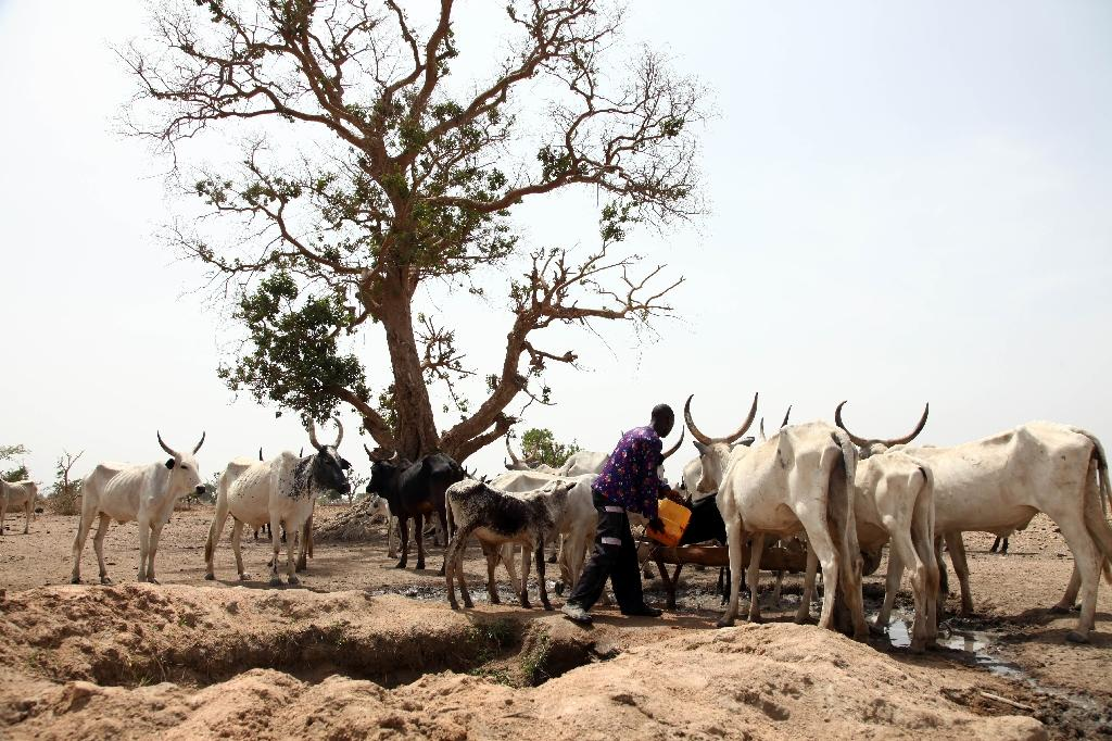 Suspected Fulani herdsmen kill at least 23 in central Nigeria