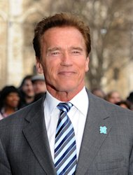 Arnold Schwarzenegger admits he had a &#39;hot affair&#39; with Brigitte Nielsen