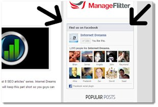 How to Get More Likes on Your Facebook Page image Facebook like box