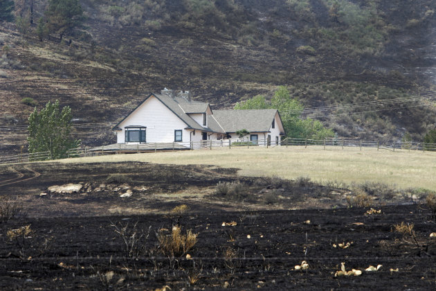 A house is surrounded by burned grass as a result of the High Park wildfire near Bellvue, Colo., on Monday, June 18, 2012. The wildfire has burned over 180 homes.