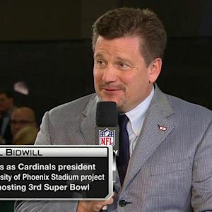 Arizona Cardinals President Michael Bidwill: 'I think our commissioner does a fantastic job'