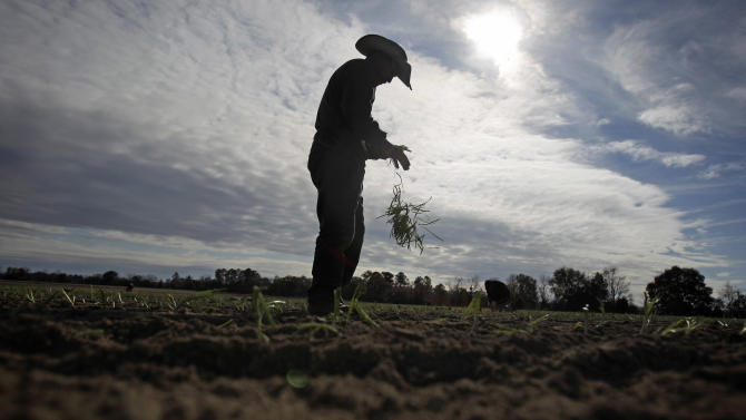 Immigration bill envisions new farm worker program