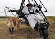 Russian President Vladimir Putin prepares to pilot a motorized hang glider while looking at an endangered crane in September 2012. Putin's bid to encourage a group of endangered cranes on their winter migration appeared to have failed spectacularly Wednesday when it emerged the birds had been taken back to a wildlife reserve by plane