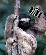 How to Embrace Mobile Search Advertising (Even If You Don't Have a Mobile Website)! image slothblogger
