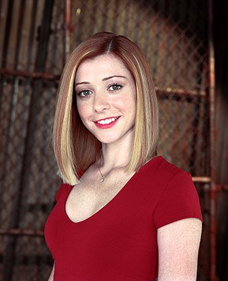 Alyson Hannigan as Willow on Buffy The Vampire Slayer