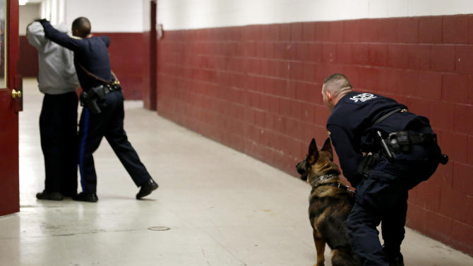 Jersey City Police Department officer Eric Petersen, right, holds on to his police dog, Ali, as Camden Police Officer Allen Williams, second from left, apprehends JCPD officer Michael O'Connell during a training exercise at the New Jersey Department of Public Works, Tuesday, Jan. 29, 2013, in Jersey City, N.J. Officers from various agencies are participating in the police dog class, which graduates on Feb. 8. (AP Photo/Julio Cortez)