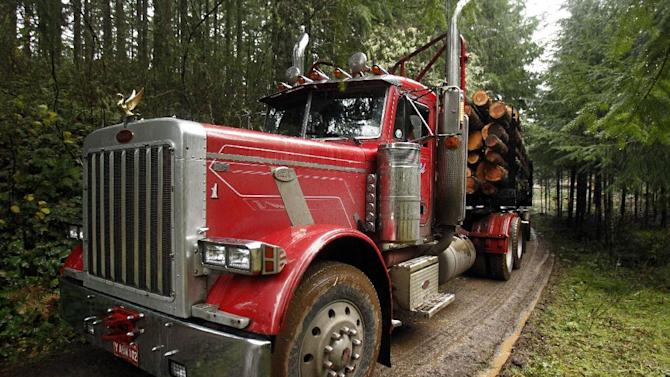A loaded logging truck heads down the road in the forest near Banks, Ore., Friday, Nov. 30, 2012.  The U.S. Supreme Court will hear a case Monday, Dec. 3, regarding regulation of water runoff from logging roads.(AP Photo/Don Ryan)