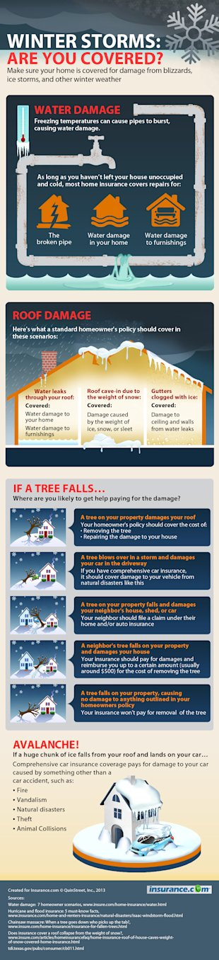 [Infographic] Winter Storms: Am I Covered? image Winter Storms IG r2