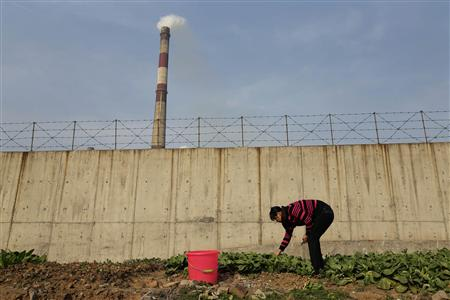 A resident picks vegetables at a vegetable patch next to a smoking chimney of Wuhan Iron And Steel Corp, in Wuhan, Hubei province, March 6, 2013. REUTERS/Stringer