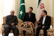 Iran's President Mahmoud Ahmadinejad (R) talks with Pakistan's President Asif Ali Zardari during a meeting on February 27, 2013 in the Iranian capital Tehran