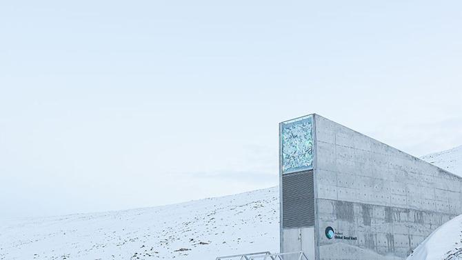First seed withdrawal from 'doomsday' vault prompted by Syrian civil war