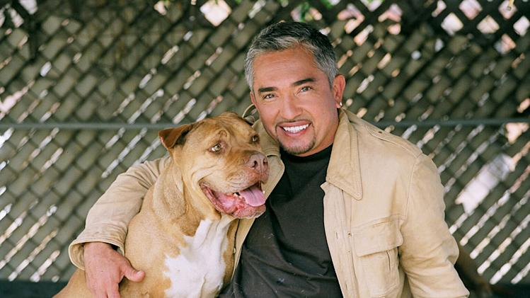 Dog Whisperer Cesar Millan with Daddy.