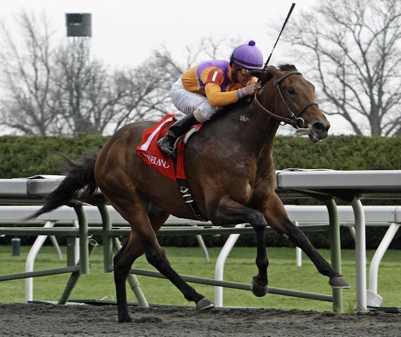 Bobby's Kitten a 3-1 favorite in Blue Grass Stakes