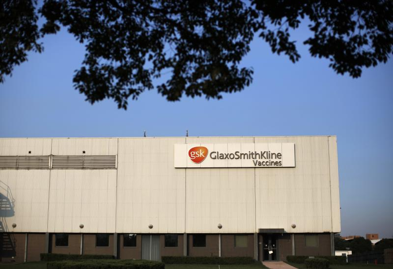 A general view of a GlaxoSmithKline company factory is seen at Pudong district in Shanghai