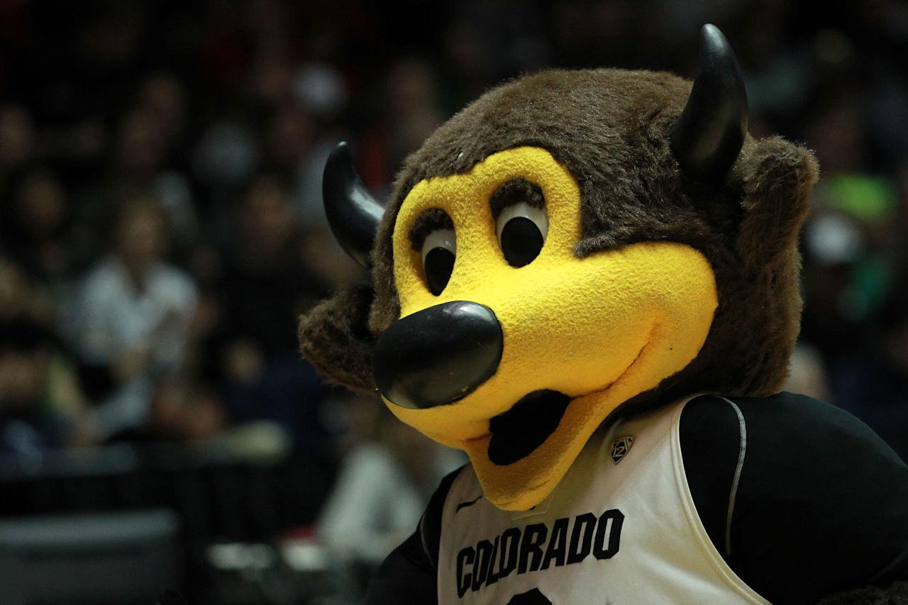 ALBUQUERQUE, NM - MARCH 17: Chip, the Colorado Buffaloes mascot, performs in the first half against the Baylor Bears during the third round of the 2012 NCAA Men's Basketball Tournament at The Pit on March 17, 2012 in Albuquerque, New Mexico.  (Photo by Ronald Martinez/Getty Images)