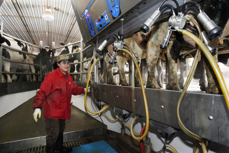 Dairy farmers worry about trade to Mexico