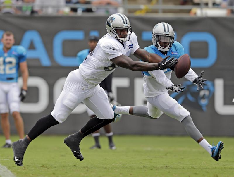 Panthers plan to involve TEs more in offense