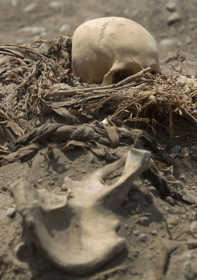 A skeleton lays unearthed in a recently excavated tomb in the sports complex where Peru's national soccer team practices in Lima, Peru, Tuesday, Feb. 26, 2013. According to Peru's Ministry of Culture, 11 pre-Inca tombs belonging to the Lima culture (200-700 AD) and Yschma (1100-1400 AD) were located inside the sports complex in the district of San Luis, where excavations started in Dec. 2012. (AP Photo/Martin Mejia)