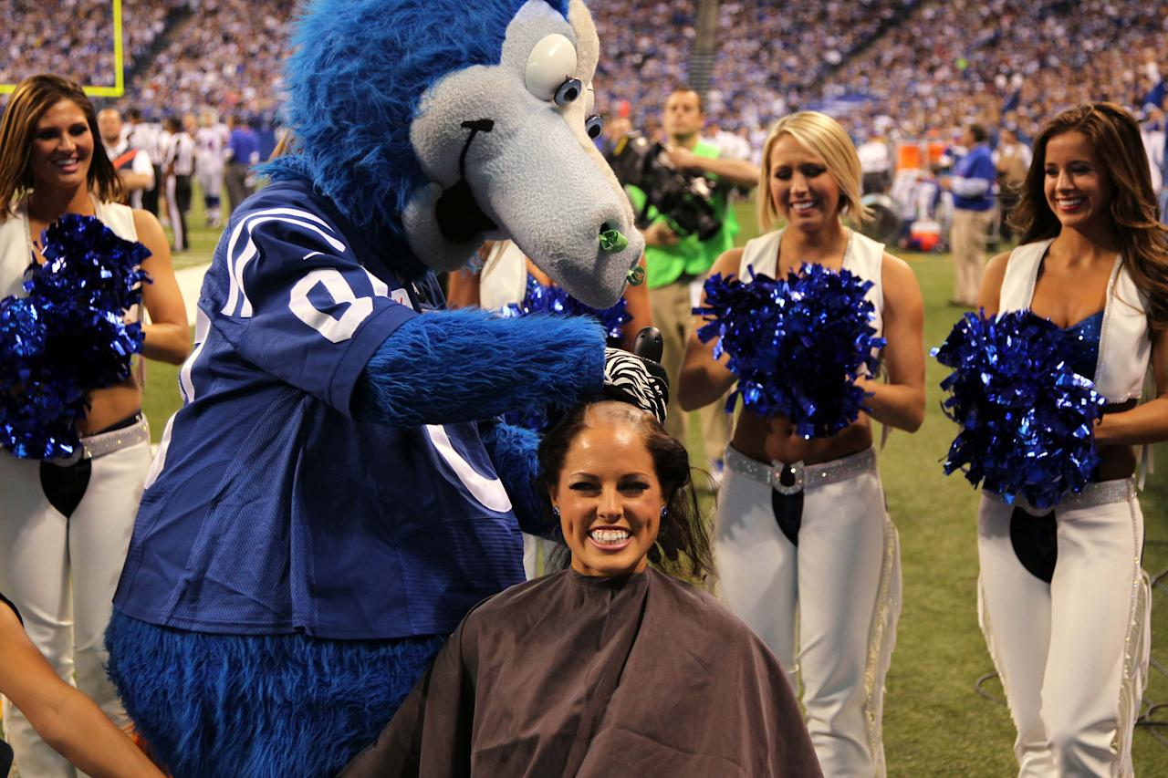 Nov 25, 2012; Indianapolis, IN, USA; Indianapolis Colts cheerleader Megan M has her head shaved during a game against the Buffalo Bills at Lucas Oil Stadium. The cheerleaders raised over $22,670 for cancer research in support of Colts coach Chuck Pagano who has leukemia. Mandatory Credit: Brian Spurlock-US Presswire