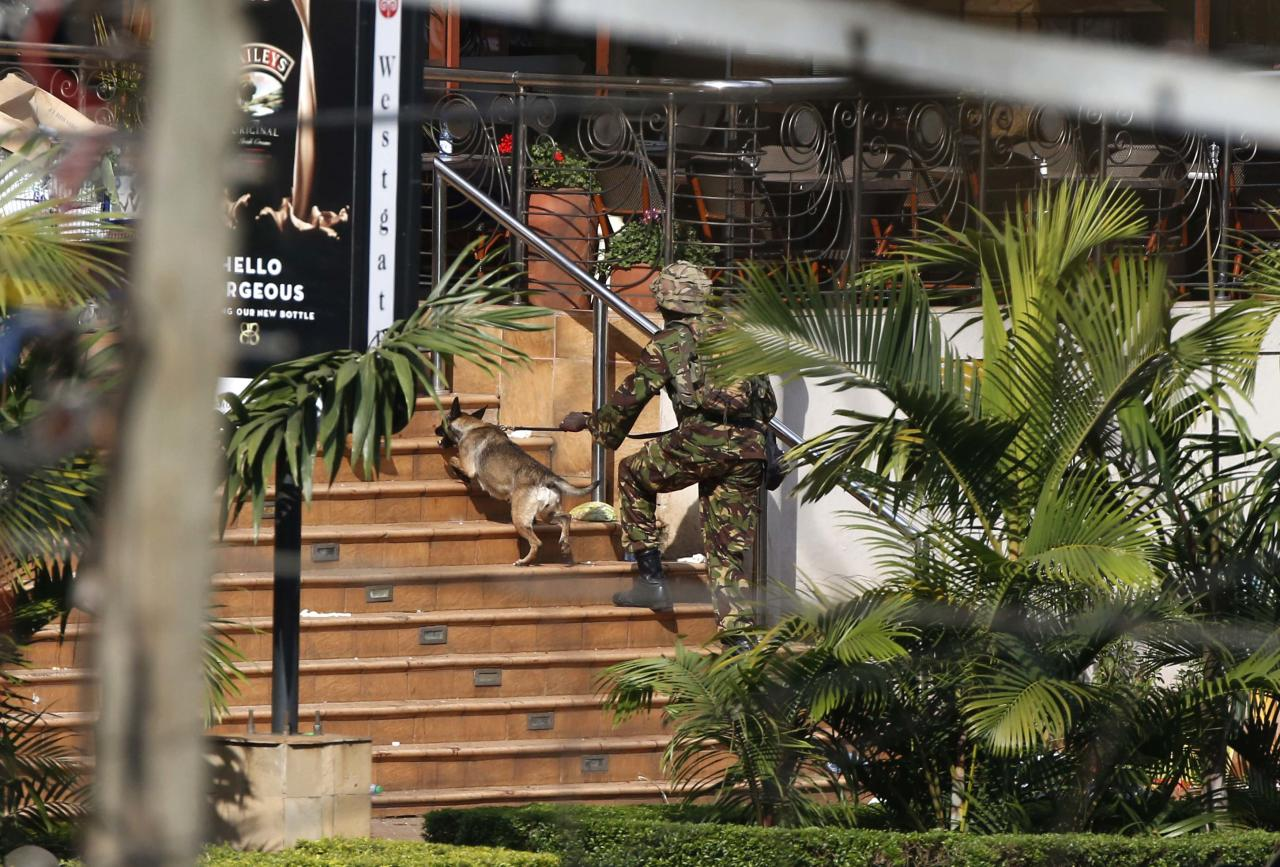 A Kenyan soldier holding a dog by its leash enters the main gate of Westgate Shopping Centre in Nairobi September 22, 2013. Islamist militants were holed up with hostages on Sunday at the shopping mall in Nairobi, where at least 59 people have been killed in an attack by the al Shabaab group that opposes Kenya's participation in a peacekeeping mission in neighbouring Somalia. A volley of gunfire lasting about 30 seconds interrupted a stalemate of several hours, a Reuters witness said, speaking from near the Westgate shopping centre that has several Israeli-owned outlets and is frequented by expatriates and Kenyans. REUTERS/Goran Tomasevic (KENYA - Tags: CIVIL UNREST MILITARY ANIMALS)