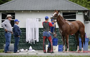 Steve Coburn, far left, and trainer Art Sherman watch as California Chrome is bathed. (AP)