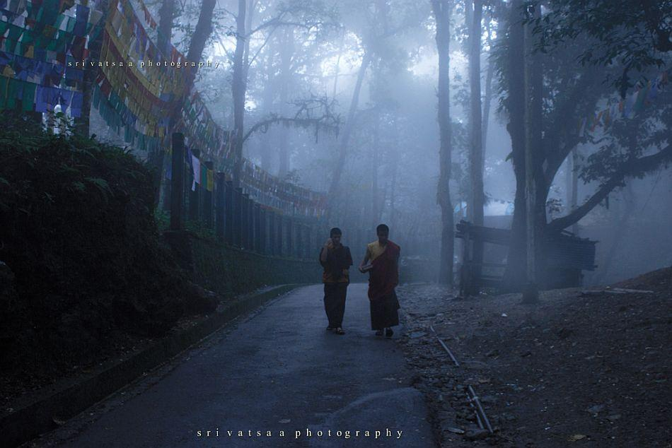 First, fog drapes the landscape and then the rain patters down. Another slice of life from a Gangtok street.