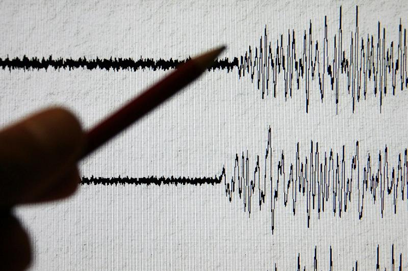 Powerful New Zealand quake causes tsunami