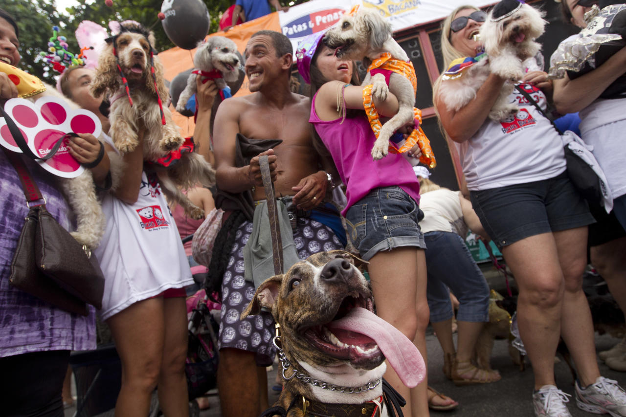 "People pose with their disguised dogs during the ""Blocao"" dog carnival parade in Rio de Janeiro, Brazil, Sunday, Feb. 3, 2013. According to Rio's tourism office, Rio's street Carnival this year will consist of 492 block parties, attended by an estimated five million Carnival enthusiasts. (AP Photo/Silvia Izquierdo)"