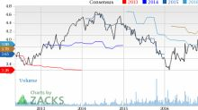 Harley-Davidson (HOG) Down 6.1% Since Earnings Report: Can It Rebound?