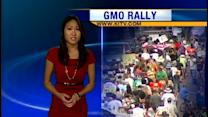 Protestors march against GMO testing and farming
