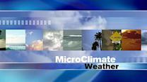 MicroClimate Forecast: Thursday, January 24, 2013 (Morning)