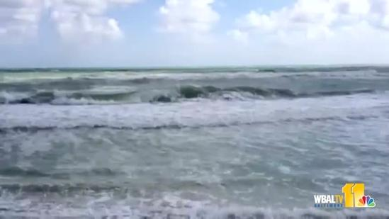 See the Florida surf ahead of Sandy