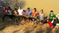 Giant Anaconda Rescue: Villagers Save Injured 16 Foot Snake