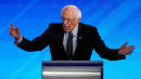 Sanders lays out his 'radical dream' to solve climate change