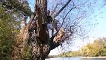 Rope Swing Fail of the Year!