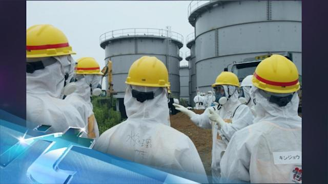 Japan Official Vows Help In Resolving Nuke Crisis