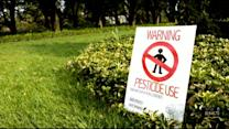 Lawn Spray Pesticides Potentially Exposing Children To Harmful Chemicals